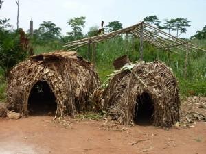 Huttes des pygmées Aka, photographiées par Mélaine