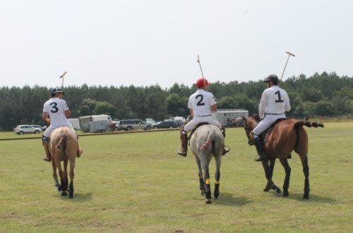 Article : Le Polo, plus qu'un sport, un art de vivre