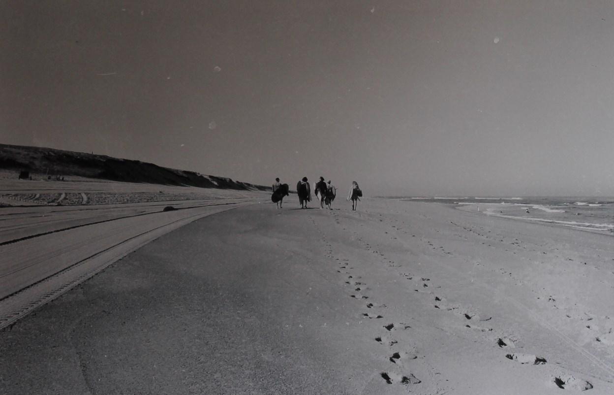 Sur une plage landaise...