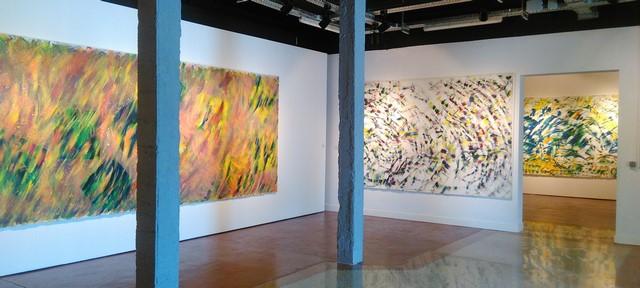 Vue de l'exposition Sistiaga au DIDAM (photo de l'auteur)